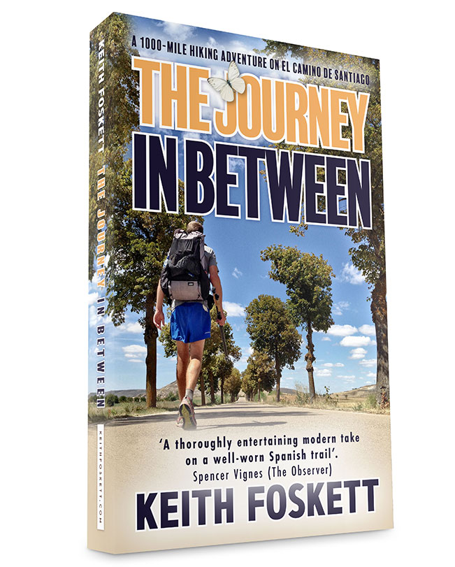 The Journey In Between Book Cover